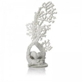 Коралл белый, Fan coral ornament white